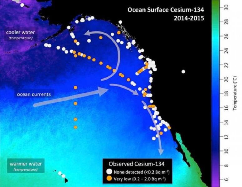Ocean Surface Cesium