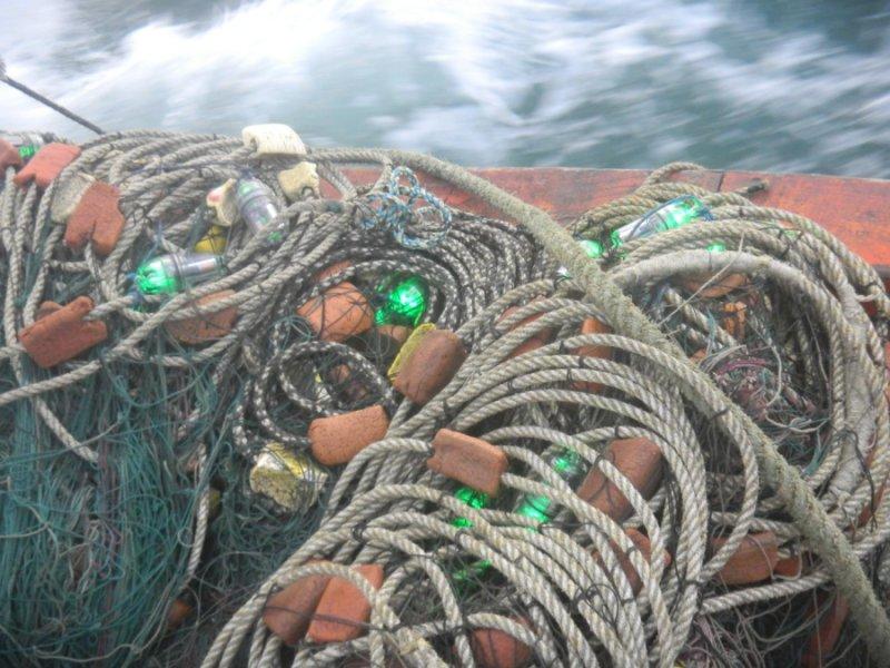 illuminating fishing net