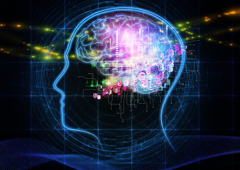 Human brain uses both sides to process speech