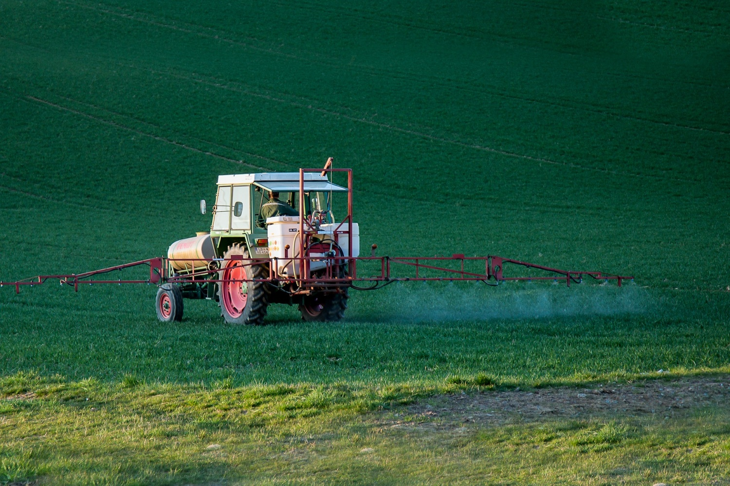 Researchers Map Effect Of Popular Weed Killer Across Several Generations