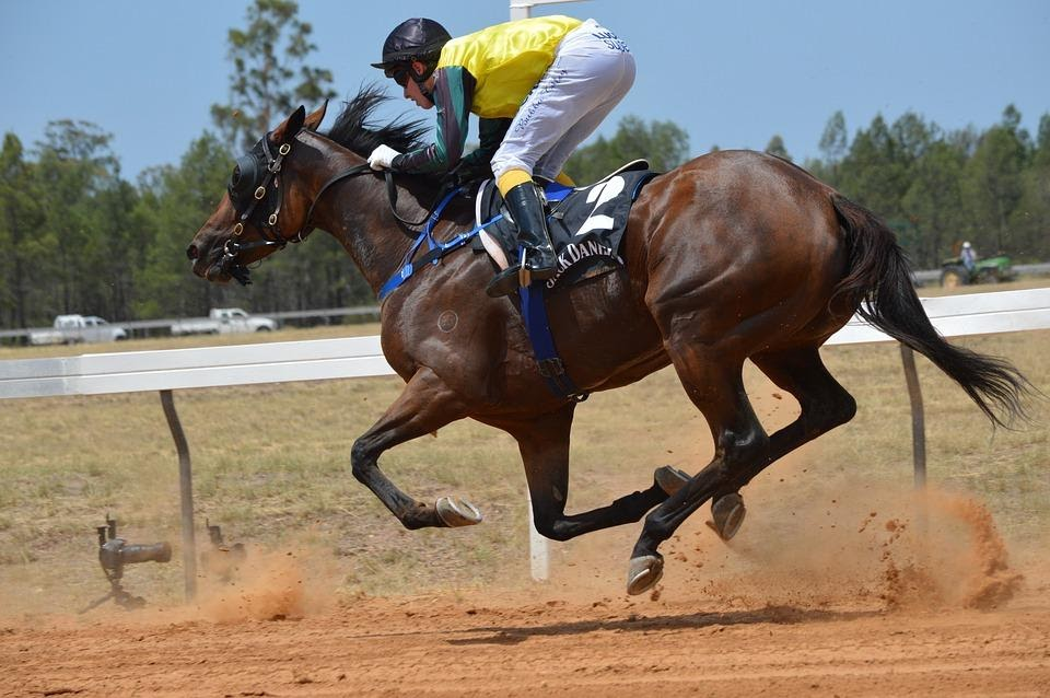 4 Things You Should Know About Horse Racing