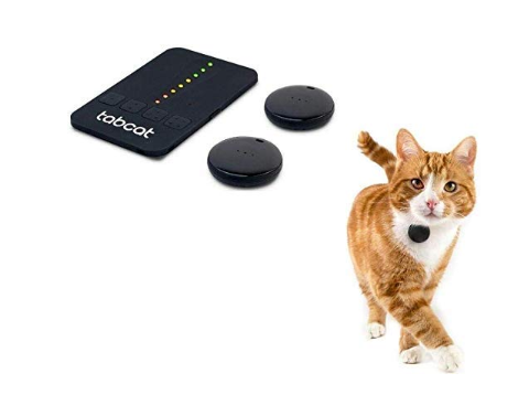 Never Lose Your Pets! These Pet Trackers from Amazon 2020 Make Sure Your Pets are Never Lost
