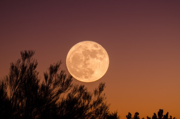First Supermoon in April 2020: See The Biggest and Brightest Pink Full Moon Happening on Apr. 7!