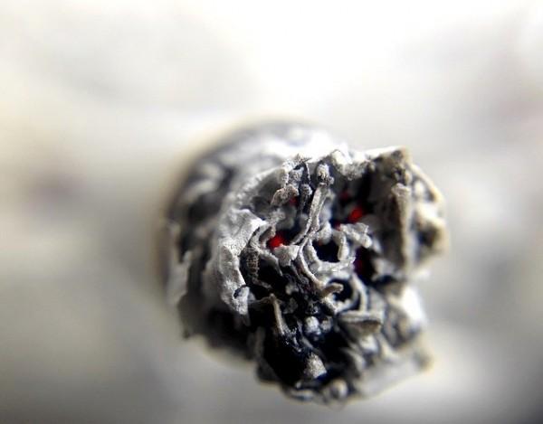 Coronavirus Risk May Increase When Smoking Marijuana Experts Say: What Should You Do?