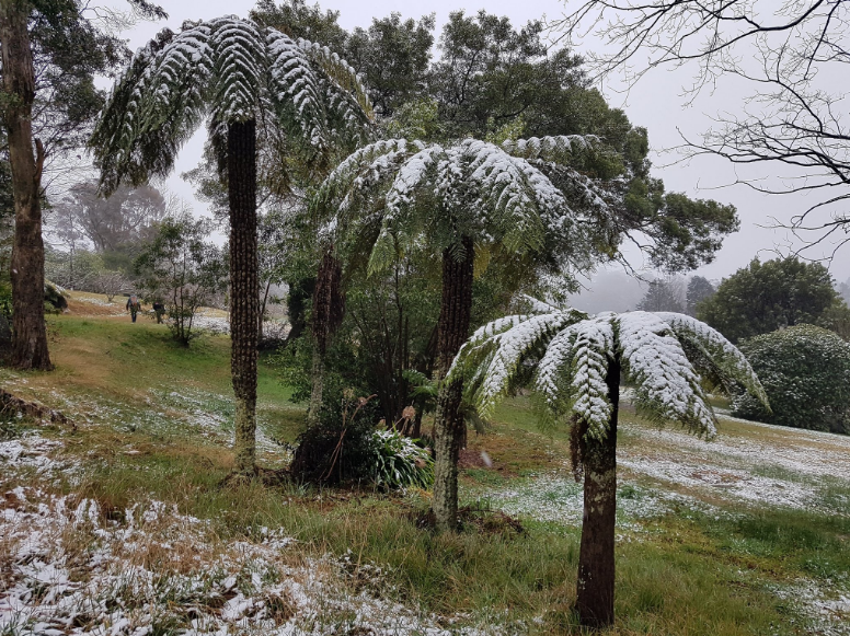Australians Woke Up to Snow Thick Weekend As Hail and Icy Winds Sweep Across the State