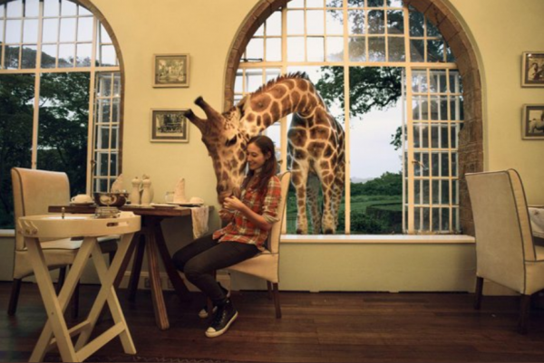 Looking for A Place to Stay? UK's New Luxury Hotel Lets You Come Up Close to Giraffes
