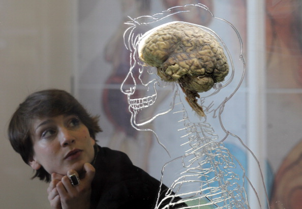 Researchers Develop a New Gene-Hacking Tool Capable of EDITING a Human Brain