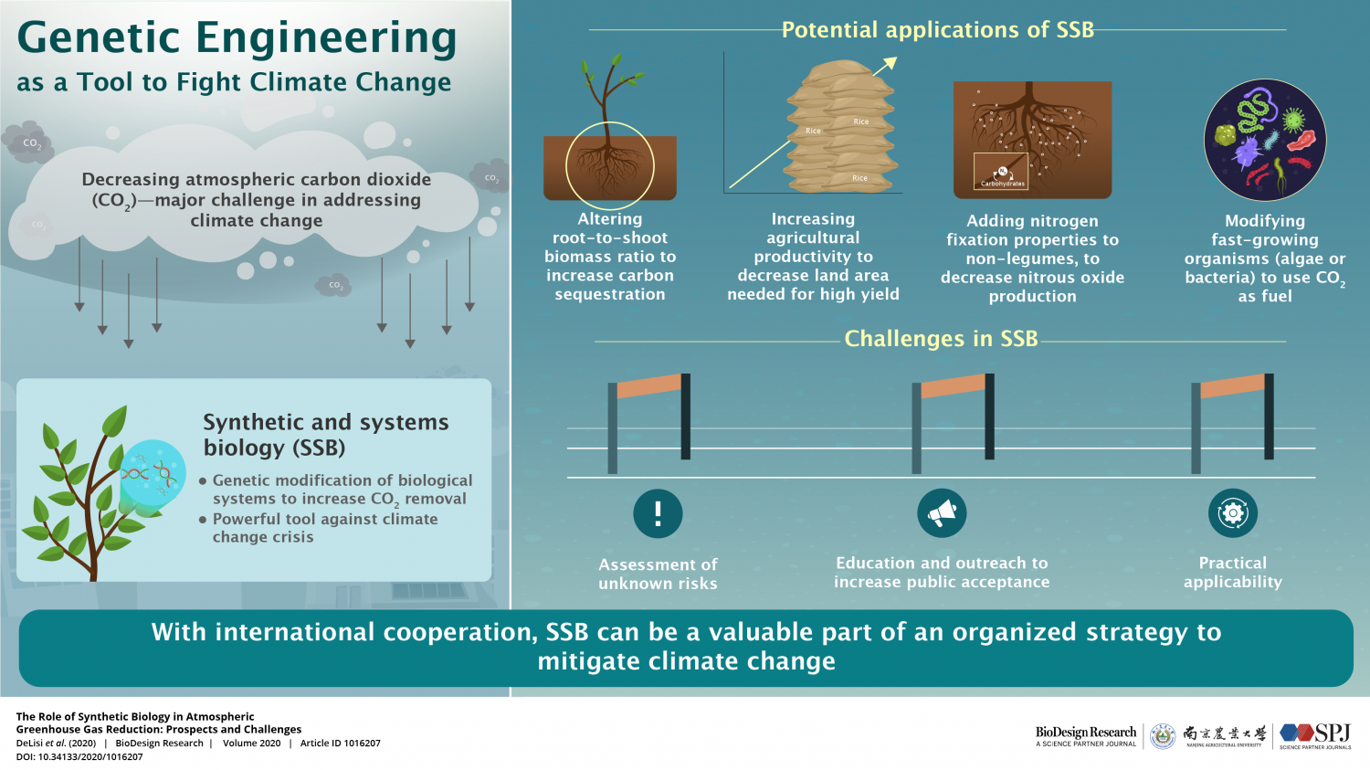 Genetic Engineering as a Tool in Fighting Climate Change