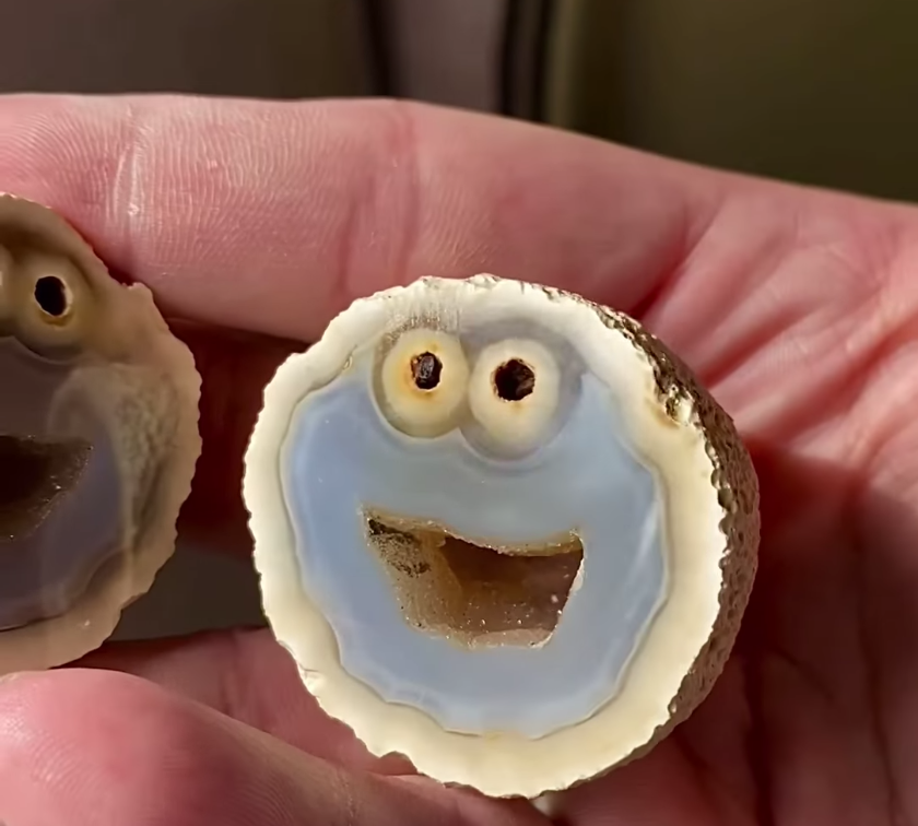Cookie Monster Blue Agate Rock from Brazil Currently Values at $10,000