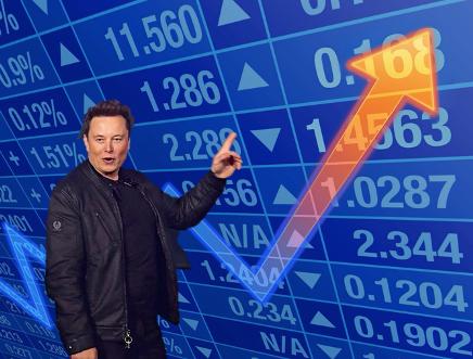 Elon Musk Stocks