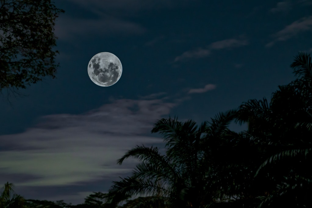 Sleeping Less At Night? Full Moon Might Be the Culprit Behind This, Study Reveals