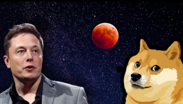 Elon Musk, Dogecoin to the Moon