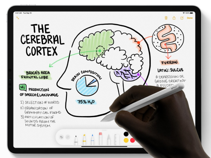 Apple Pencil 3 Could Arrive With iPad Pro 2021— Here's Its First Look