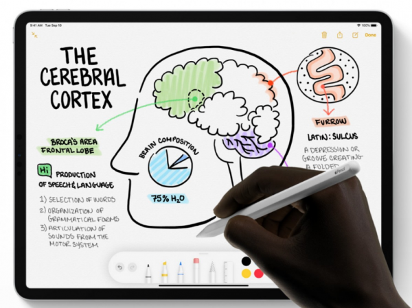 Apple Pencil 3 Could Arrive With iPad Pro 2021— Here's Its ...