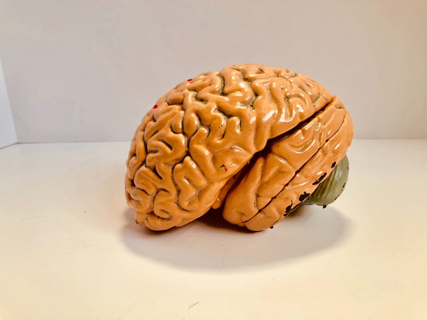 There is Brain Technology Allows Brain-to-Brain Connection Between Friends