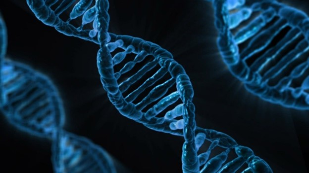 With Genome Sequencing, the Fight Against Cancer Enters the Next Round