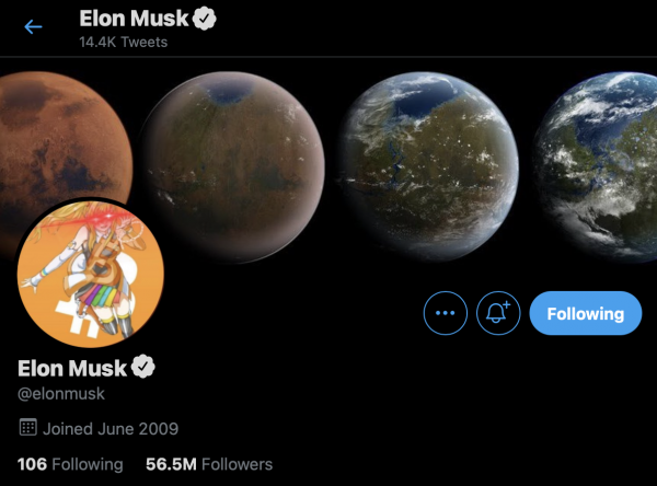 Elon Musk Changes Twitter Icon to Bitcoin Triggered Girl