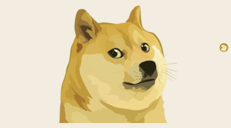 Dogecoin is A Bad Boy, and a Victim of Elon Musk's Bump and Dump Scheme, Says Analyst