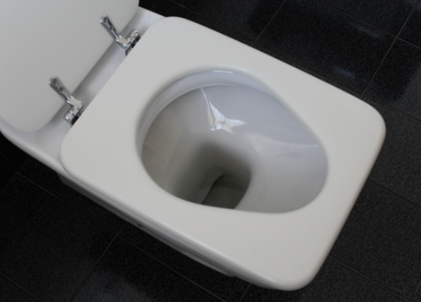 South Korean Toilet Pays Users Digital Currency for 'Taking Care of Their Business'