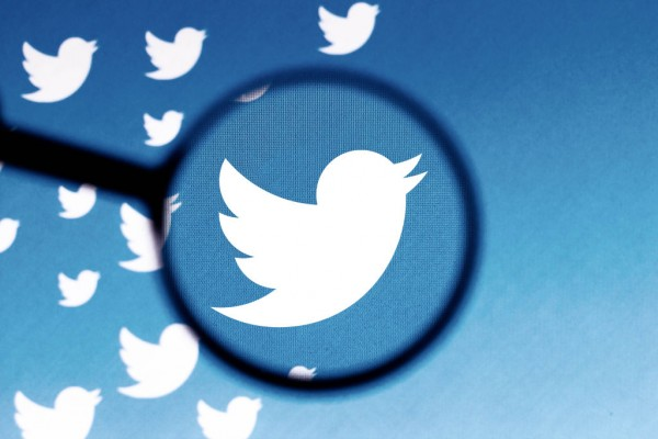 Twitter Adds Blue-Check Verification to Multiple Fake Accounts—How Did They Fool the Process?