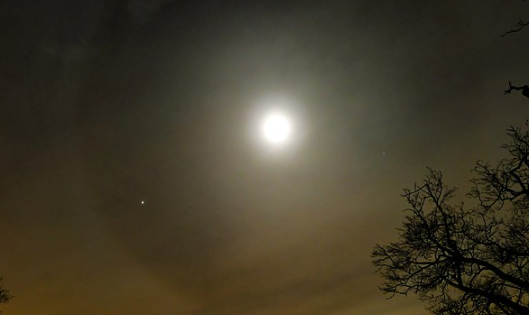 How to Watch the 'Buck Moon' at Its Brightest