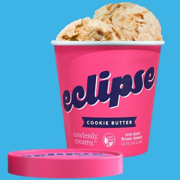 #TechTimesLifeHack:Presenting Vegan Ice Cream, the New Technology of Ice Cream Making