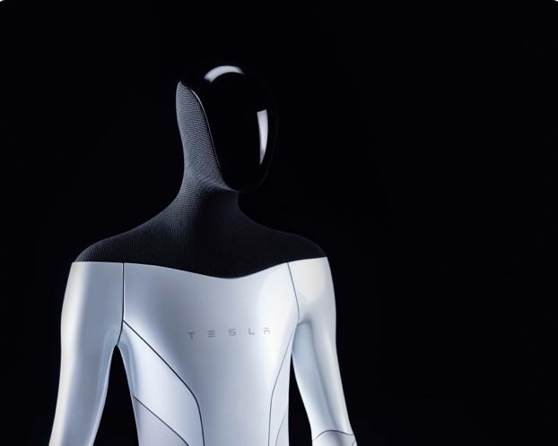 Elon Musk and Tesla's Humanoid Robot