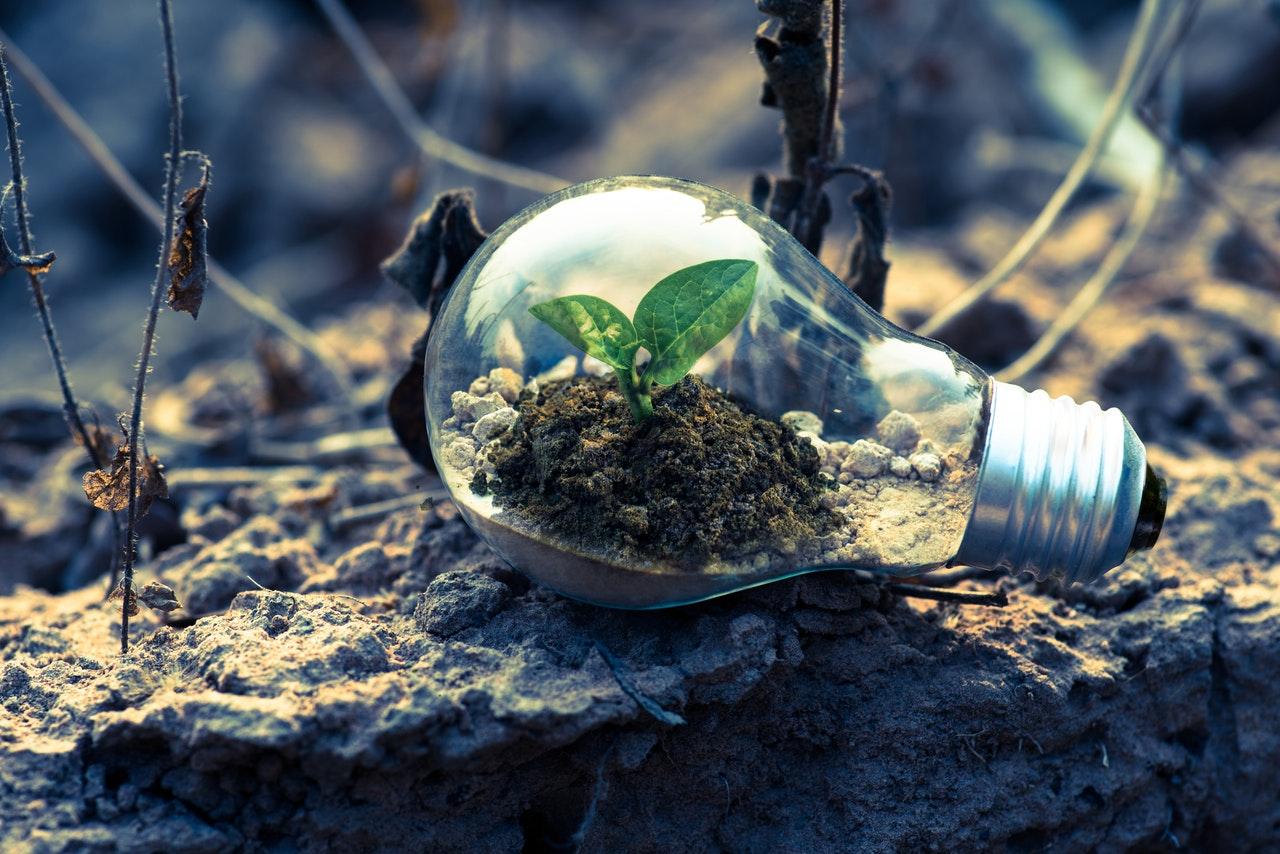 How Biogas-to-Liquid Fuel Could Revolutionise the Post-Pandemic Green Recovery   Renovare Fuels