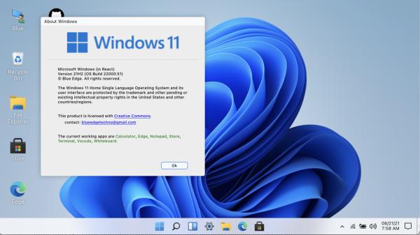 Windows 11 Software Test via Browser