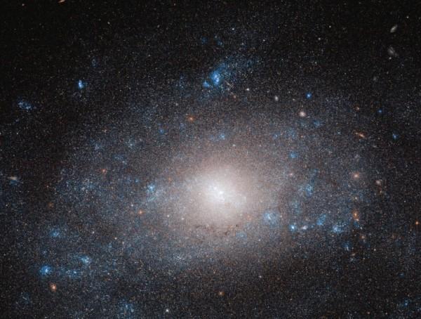 NGC 5585