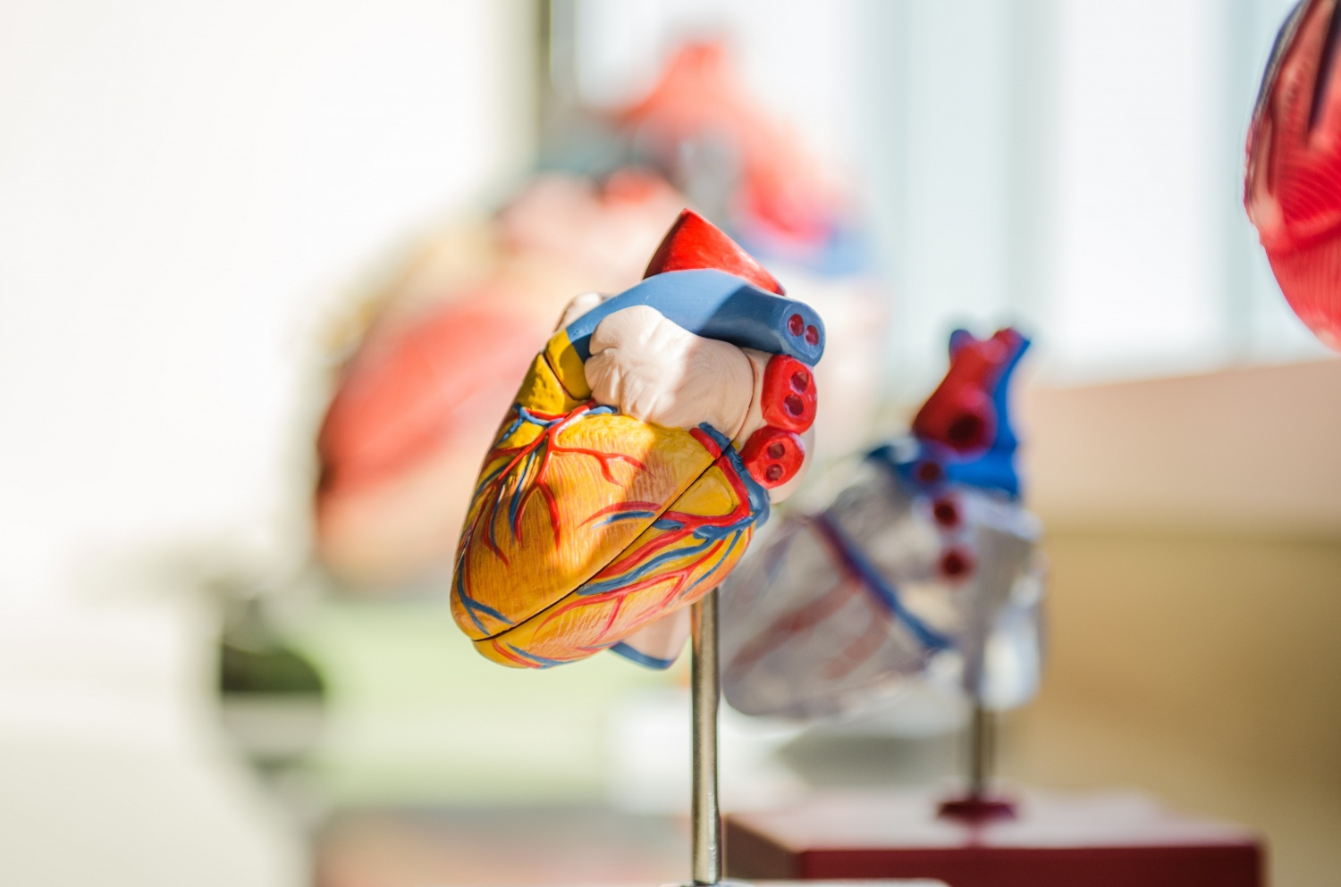 Artificial Intelligence Technology for Heart Imaging Can be Used as Tool to Help Doctors Examine Scar Tissue
