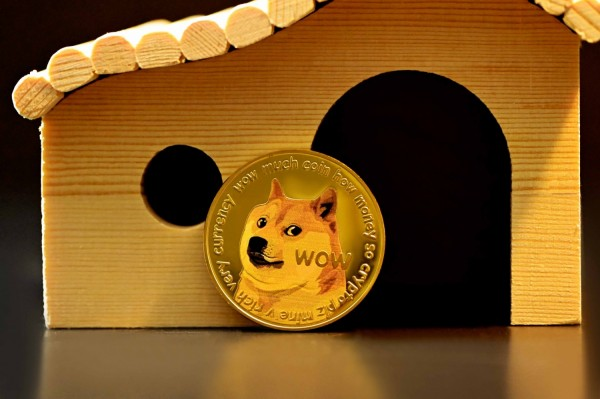 DOG Coin NFT Sees Double Increase in Value in Less than 24 Hours of Trading