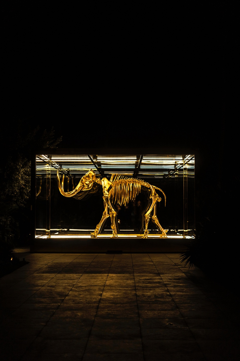 Bioscience Firm Insists They Can Bring an Extinct Mammoth Back to Resurrection by Leveraging DNA Technology with $15M Seed Fund