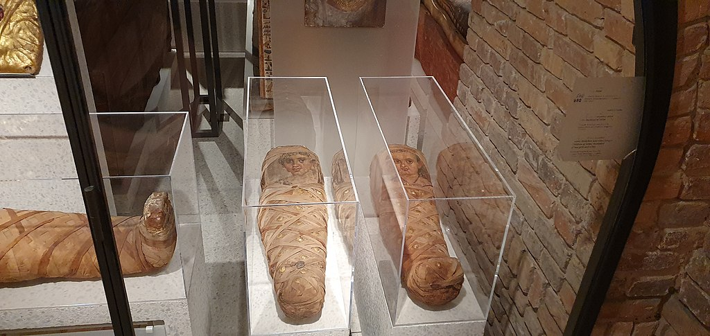 What do Egyptian Mummies Look Like? DNA Recreation Shows Digital Image Through 3D Reconstruction