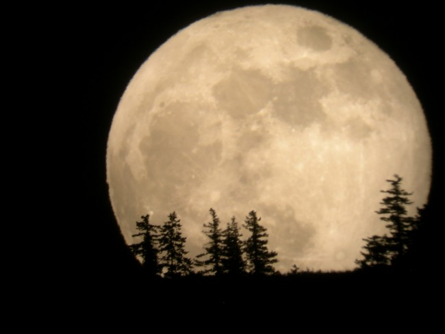 Want to Watch the Supermoon That is Set to Light Up the Nigh Sky Tonight LIVE? Here's How.